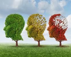 Roche Kembangkan Obat Alzheimer
