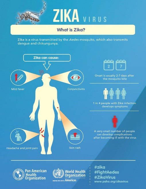 Vaksin Dengue: DBD Hilang, Zika Mewabah