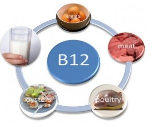 Manfaat Vitamin B12
