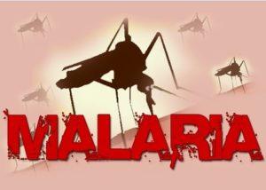 Awas Malaria Makin Resisten terhadap Pengobatan