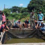 APP Sinar Mas Bantu Warga Tangerang Budidaya Ikan Lele