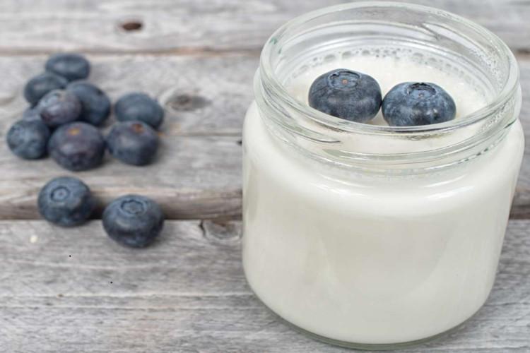 Probiotik mengurangi efektivitas imunoterapi