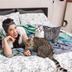 Hati-Hati Kucing Rentan Terpapar Virus COVID-19