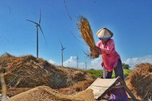 Lomba foto UNDP bertemakan perempuan